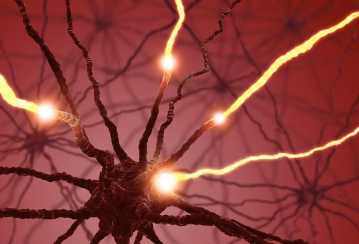 Light-sensitive switch analyzes protein involved in neurobiology.