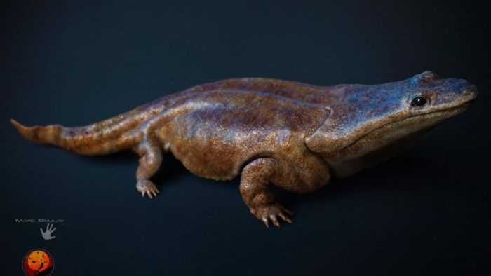 An artist's rendition of a previously unknown species of crocodile-like