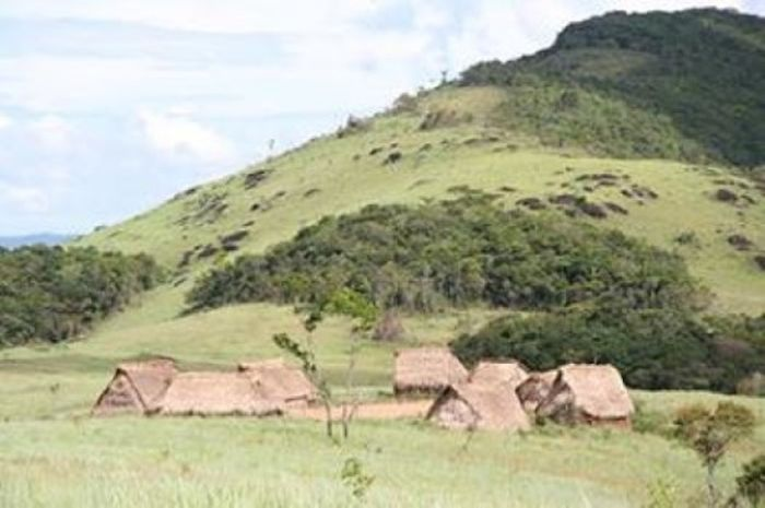 Huts in an isolated village inhabited by Yanomami Amerindians in southern Venezuela. Members of the tribe were isolated from the modern world and had never been exposed to antibiotic drugs, but the bacteria on their skin and in their mouths and intestines still had antibiotic resistance genes.