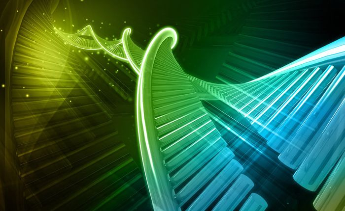 DNA can provide stable storage for thousands of years, according to researchers.