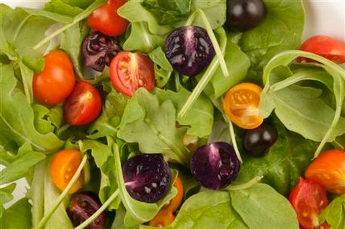 This image provided by The John Innes Centre, UK, shows a salad made with red and purple tomatoes. A small British company is planning to apply for U.S. permission to produce and sell purple tomatoes that have high levels of anthocyanins, compounds found in blueberries that some studies show lower the risk of cardiovascular disease and cancer. The Food and Drug Administration would have to approve any health claims used to sell the products. Cancer-fighting pink pineapples, heart-healthy purple tomatoes and less fatty vegetable oils may someday be on grocery shelves alongside more traditional products.