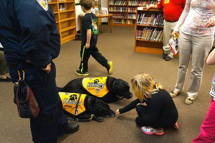 Black labs are the stars of the show in this fire safety program