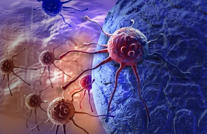 International research team discovers natural alkaloid compounds that have potential as drugs to fight cancer.
