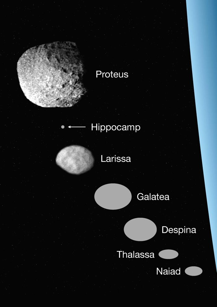 An artist's impression of all the known inner moons of Neptune to date.