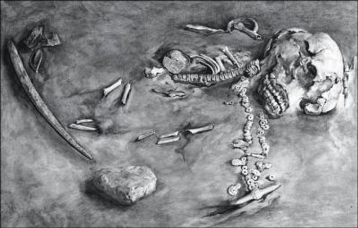 The remains of the 24,000-year-old Mal'ta boy. / Credit: State Hermitage Museum in Russia