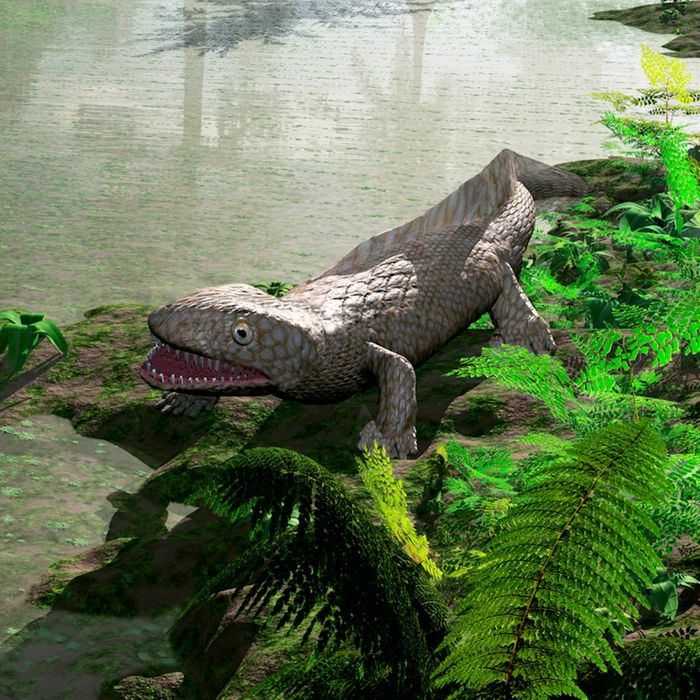 A computer render of a tetrapod, a type of creature that might have existed just after Earth's extinction-level-event 360 million years ago.