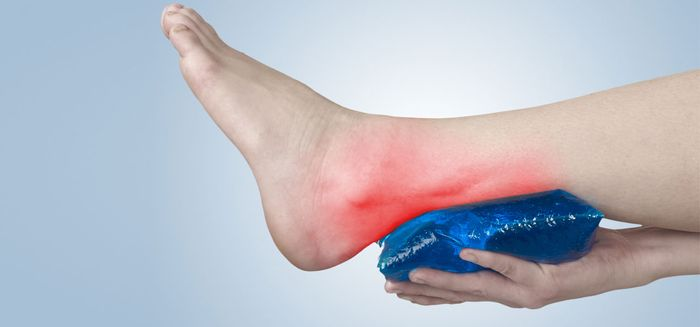 New TSRI Study Reveals Gene Crucial in Keeping Tendons Healthy