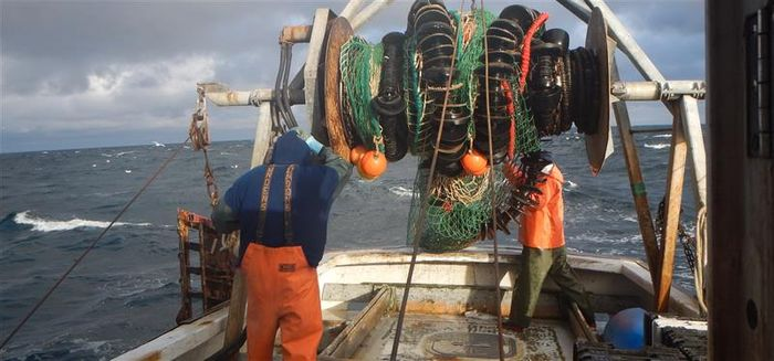 Fishing in the Gulf of Maine is a crucial part of the economy and culture. Photo: NOAA