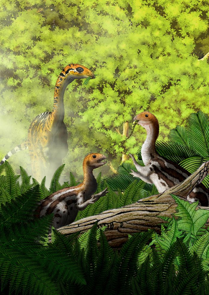 An artist's rendition of the Limusaurus.