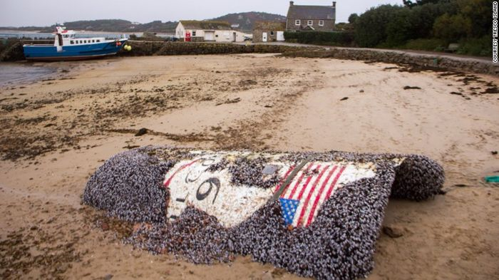 The rocket that washed up in the UK is thought to be a piece of the Falcon 9 rocket that blew up earlier in the year.