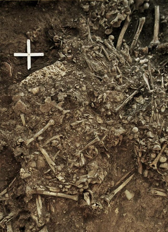 This image shows the remains of a 20-year old woman (Gokhem2) from around 4900 BP that was killed by the first plague pandemic. She was one of the victims of a plague pandemic that likely lead to the decline of the Neolithic societies in Europe. / Credit: Karl-Göran Sjögren / University of Gothenburg