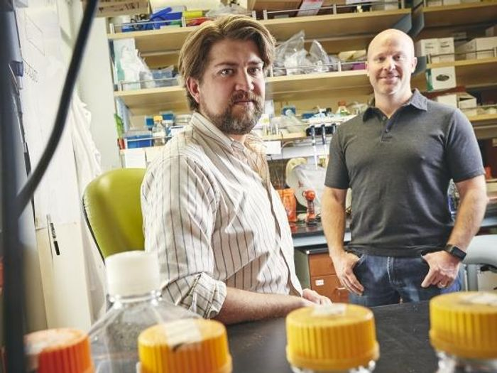 Michael Coryell, a doctoral student in the Department of Microbiology and Immunology at Montana State University and fellow in the Molecular Biosciences Program, left, and Seth Walk, associate professor in the Department of Microbiology and Immunology / Credit: Adrian Sanchez-Gonzalez