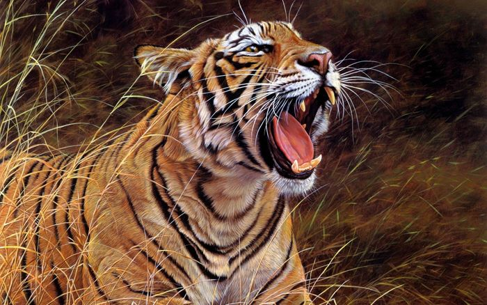 Tigers roar in different ways, and scientists may be able to use that to their advantage.