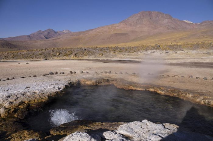 Bacteria were collected from this hot spring in the El Tatio region in northern Chile. / Credit: Yaroslav Ispolatov