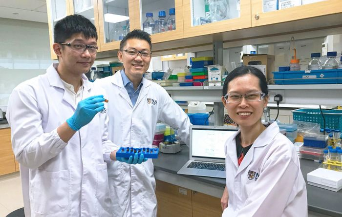 Mr. Toh Yi Long, Associate Professor Alexandre Chan and Assistant Professor Lau Aik Jiang are members of the team that found clinically relevant factors which predispose patients to chemobrain. / Credit: National University of Singapore