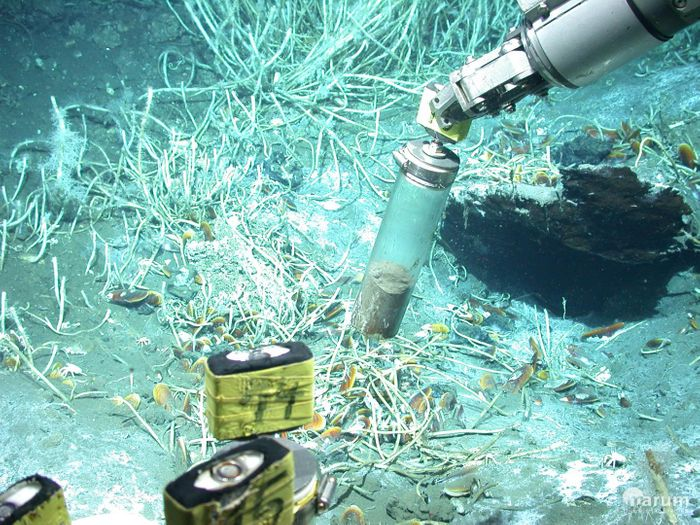 The submersible vehicle MARUM-QUEST samples for sediment at oil seeps in the Gulf of Mexico. / Credit: MARUM -- Center for Marine Environmental Sciences