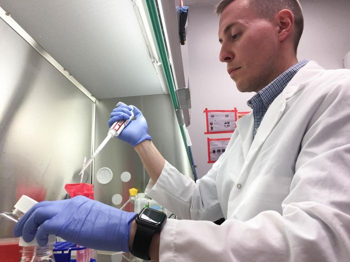 Jacob Yount conducts lab research at The Ohio State University College of Medicine. Yount led a new study that links heart complications from the flu with a common gene mutation. / Credit: The Ohio State University Wexner Medical Center