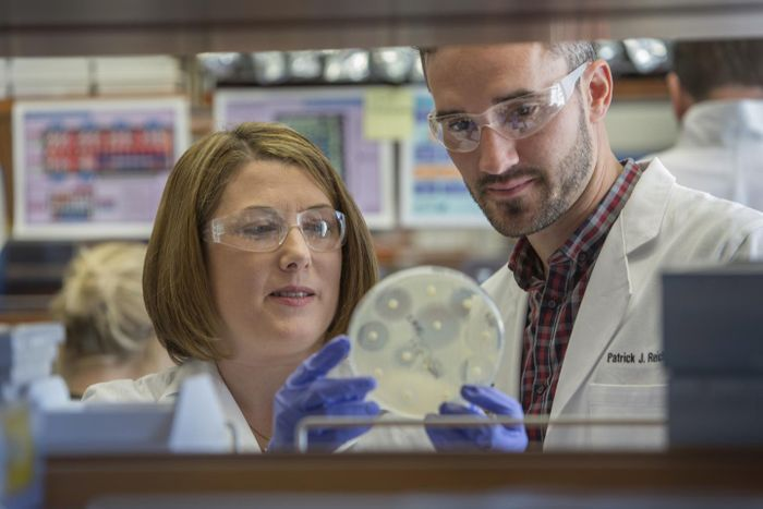 New research sheds light on how MRSA is introduced into households and how it can spread among family members. Shown are the study's senior author, Stephanie A. Fritz, MD, (left) and co-author Patrick Hogan. / Credit: Washington University School of Medicine