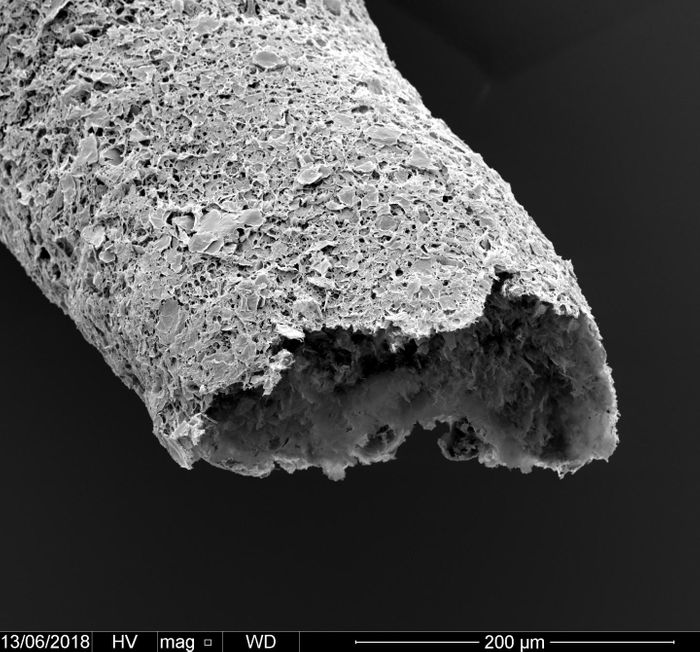 Close-up of a tubular structure made by simultaneous printing and self-assembling between graphene oxide and a protein. / Credit: Professor Alvaro Mata