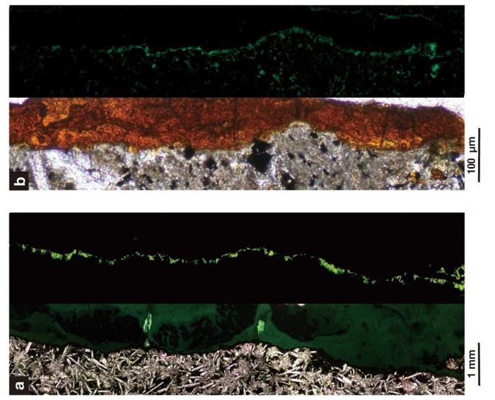 Dense colonies of aerobic bacteria live in tunnels of clay minerals within solid rock 122 m beneath the seafloor. (B is 1,000x greater magnification than A). Top, normal illumination; bottom, fluorescent. Solid basalt rock (gray), clay minerals (orange), bacterial cells (green). / Credit: Suzuki et al. 2020, DOI: 10.1038/s42003-020-0860-1, CC BY 4.0
