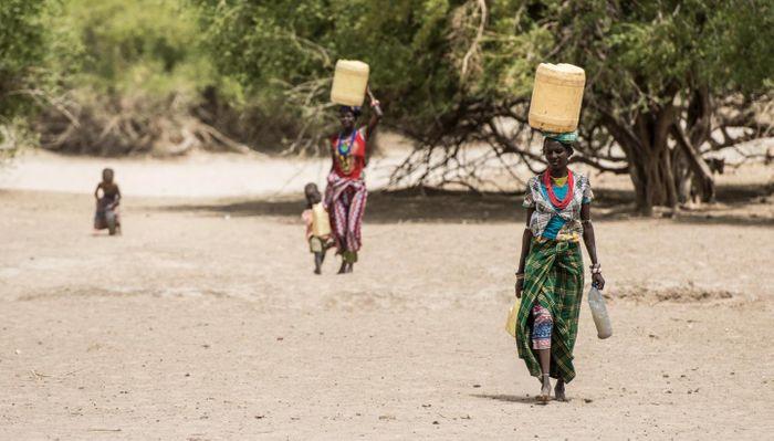 Turkana women carry water back to their dwelling, in northern Turkana. / Credit  Kennedy Saitoti, Mpala Research Centre