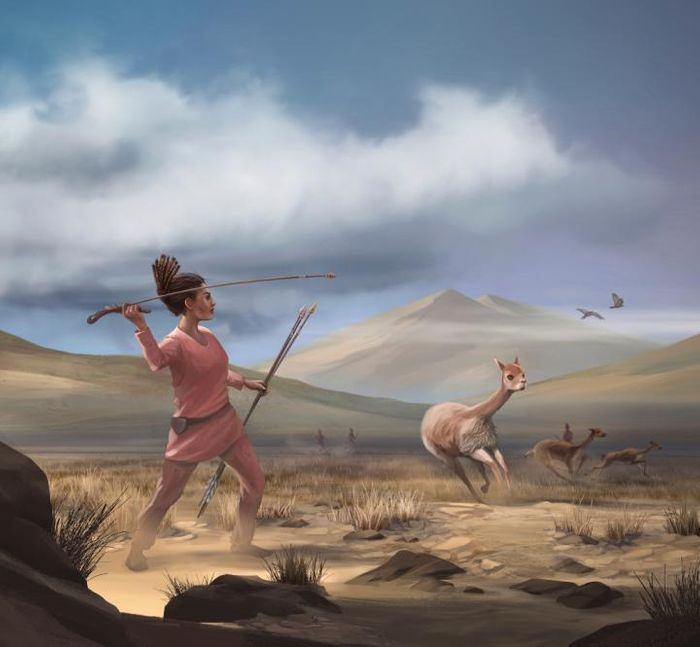 Illustration of female hunter depicting hunters who may have appeared in the Andes 9,000 years ago. / Credit: Matthew Verdolivo, UC Davis IET Academic Technology Services