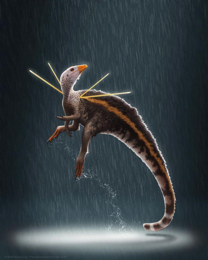 Credit  Artwork © Bob Nicholls / Paleocreations.com