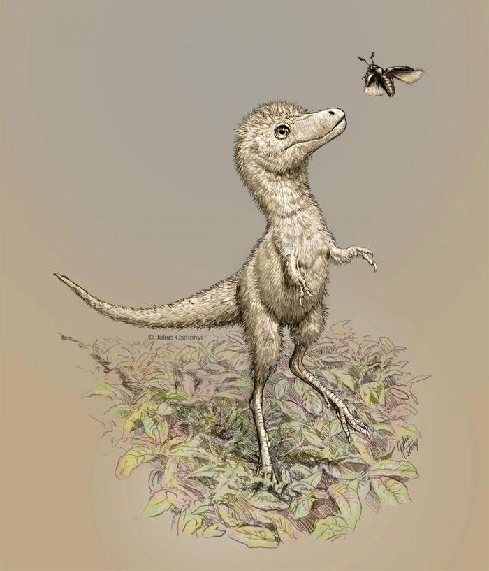 Artist's impression of a juvenile tyrannosaur / Credit: Julius Csotonyi