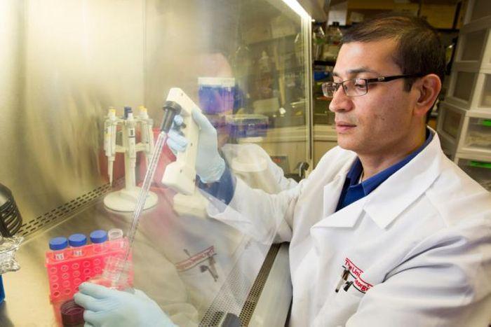 Lohitash Karumbaiah at work in his lab. / Credit: University of Georgia