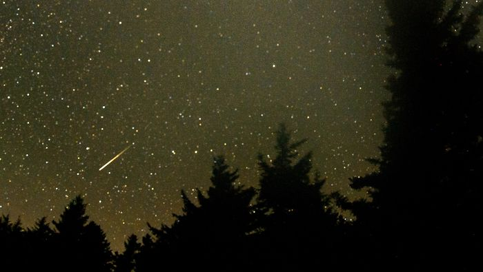 A meteor streaks across the sky during the annual Perseid meteor shower Friday, August 12, 2016 in Spruce Knob, West Virginia. (cropped from original) / Credit:  NASA / Bill Ingalls