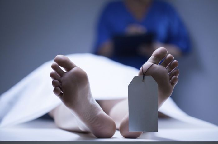 The postmortem microbiome could reveal time of death.