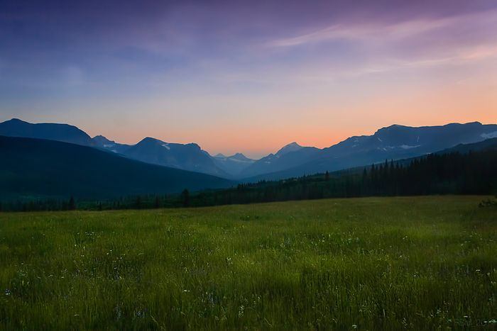 Alpine meadow overlooking Two Medicine Valley. Photo: Earthjustice