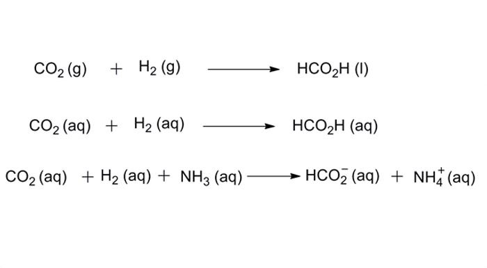 Chemical reaction of carbon dioxide reduction into formate (Wang and Himeda, 2012)