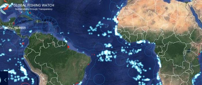 Global Fishing Watch map, credit: Global Fishing Watch