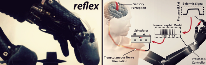 Photo and diagram of prosthesis, credit: Science Robotics