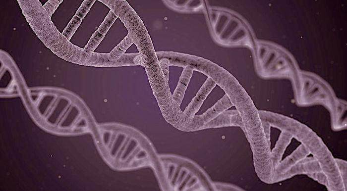 DNA / Credit:Pixabay