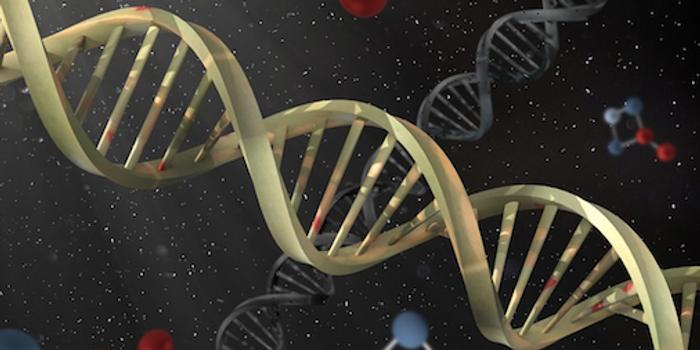 DNA / Credit: CC0