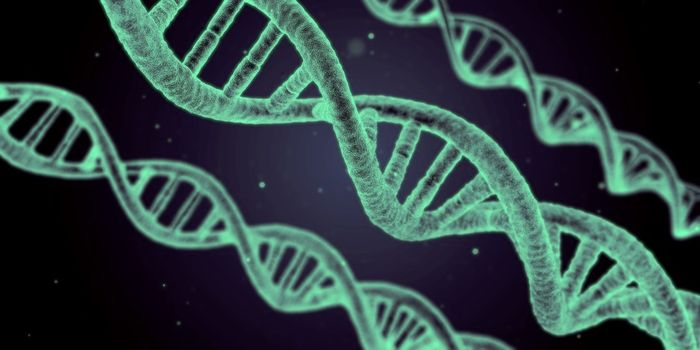 When cells divide and DNA replication occurs, mutations can be introduced. / Image Credit: Pixabay