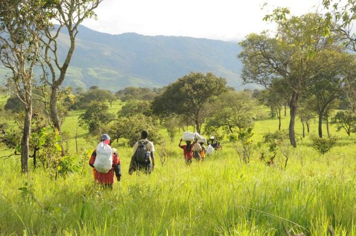 A team surveys Luama Katanga Reserve, adjacent to the newly created Kabobo Natural Reserve in eastern Democratic Republic of Congo. Photo by Andy Plumptre/WCS