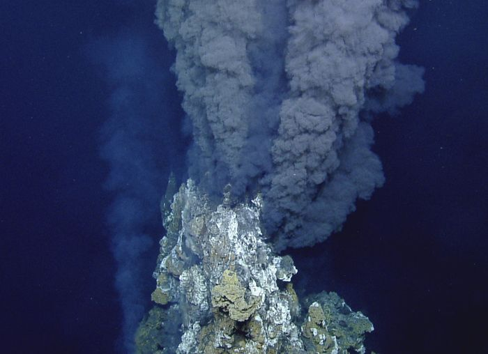 Hydrothermal vents like this one could provide enough heat for deep-sea skates to incubate their eggs more quickly.