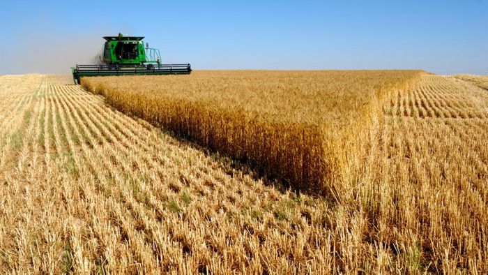 Crop cultivation is rising in Russia to meet the country's goal of self-sufficiency by 2020