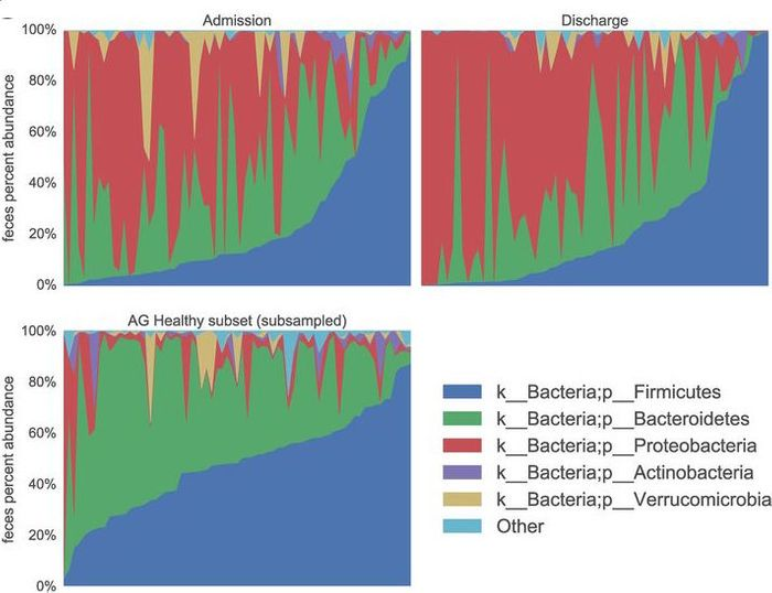 Stacked taxonomy bar charts for fecal split by time point, showing a random subsample of healthy AGP subject samples. / Credit: mSphere, McDonald et al