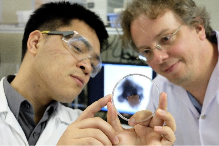 Scientists target tumors with magnetized gas bubbles