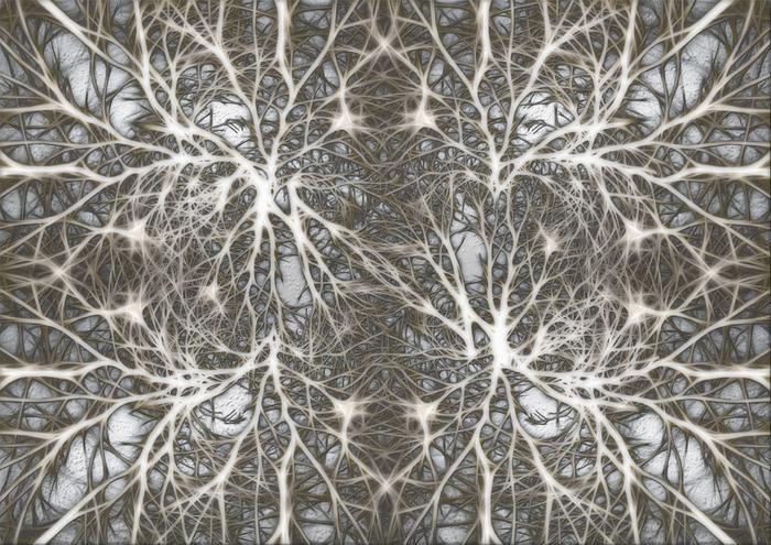 Laser microscope reveals brain activity at the single neuron level