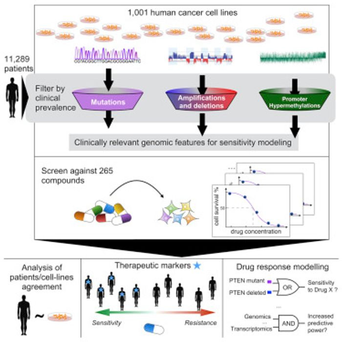 Image: Iorio et al./Cell 2016