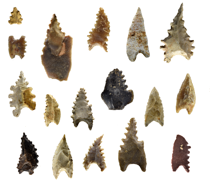 Stone arrowheads called Maros points are up to 8,000 years old, and thought to be typical of the Toalean techno-complex created by the people living on Sulawesi. / Credit: Yinika L Perston