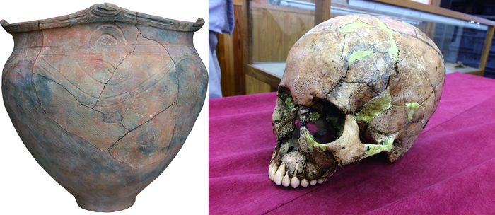 Jomon pottery from the Hirajo shell midden (Late Jomon) and a skull from which ancient DNA was extracted. / Credit: Shigeki Nakagome, Lead researcher, Assistant Professor in Psychiatry, School of Medicine, Trinity College Dublin.