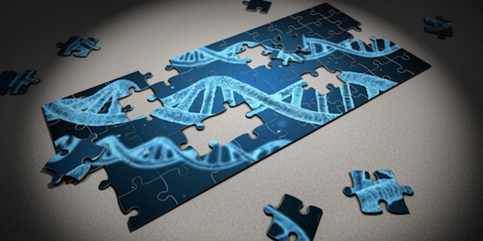 Researchers are learning more about how genetic variations contribute to ASD / Image credit: MaxPixel