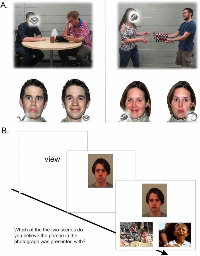 Social-cognitive functional MRI tasks. For emotional perspective-taking (A) participants saw a social interaction within a scene presented on the top of a screen, then decided which of two facial expressions best matches the blank face. During the emotional attribution task (B), participants were decided which of two social scenes they thought another person was reacting to (view). Controls are not described here for clarity.