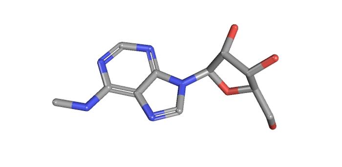 N6-Methyladenosine / Credit: PubChem